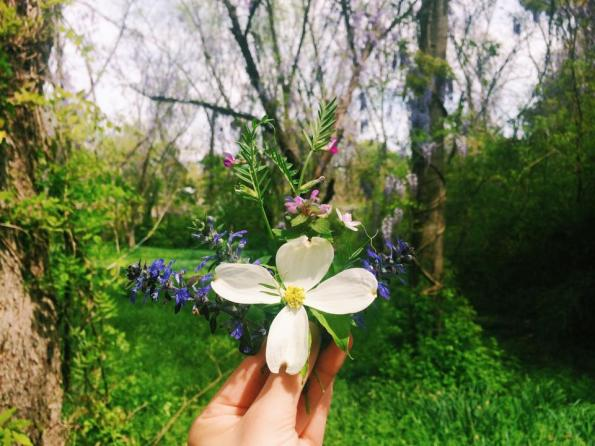 pastureflowers